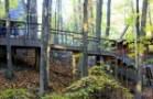 CVNP-Tree-House_Exterior