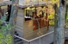 CVNP-Tree-House_Exterior-2
