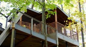 A National Park Tree House