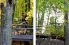 CVNP-Tree-House_Header
