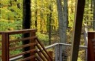 CVNP-Tree-House_Stairs